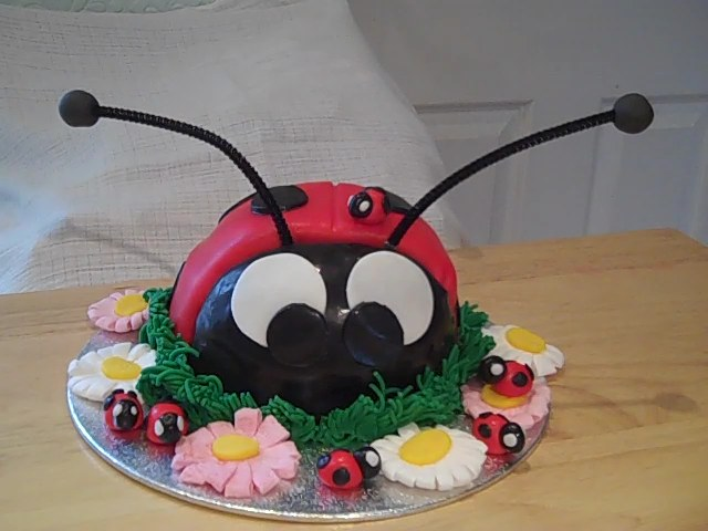 Ladybird Birthday Cake Nature Party Create